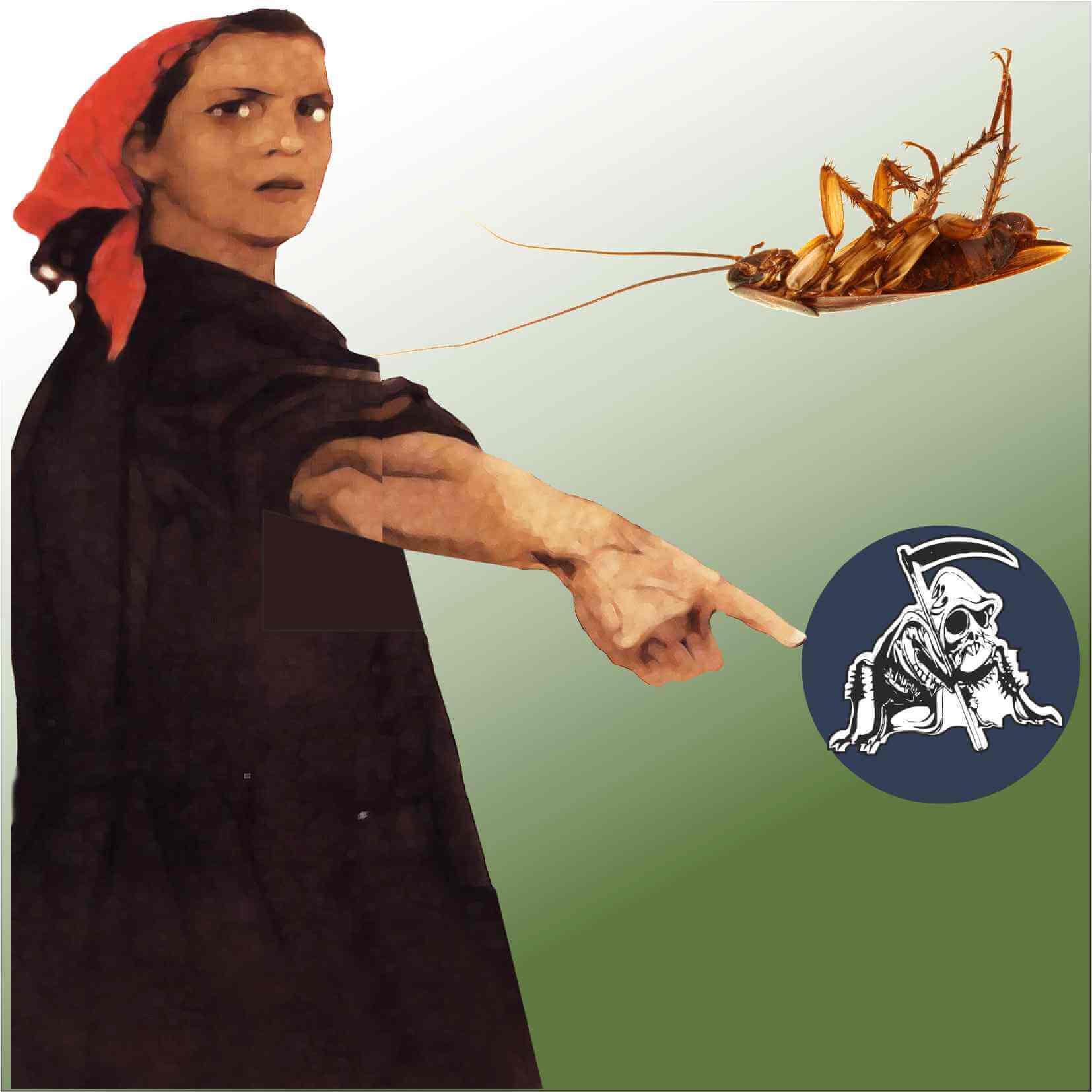 Методика быстрого выведения тараканов из квартиры. Действуй по технологии Дохлокс.