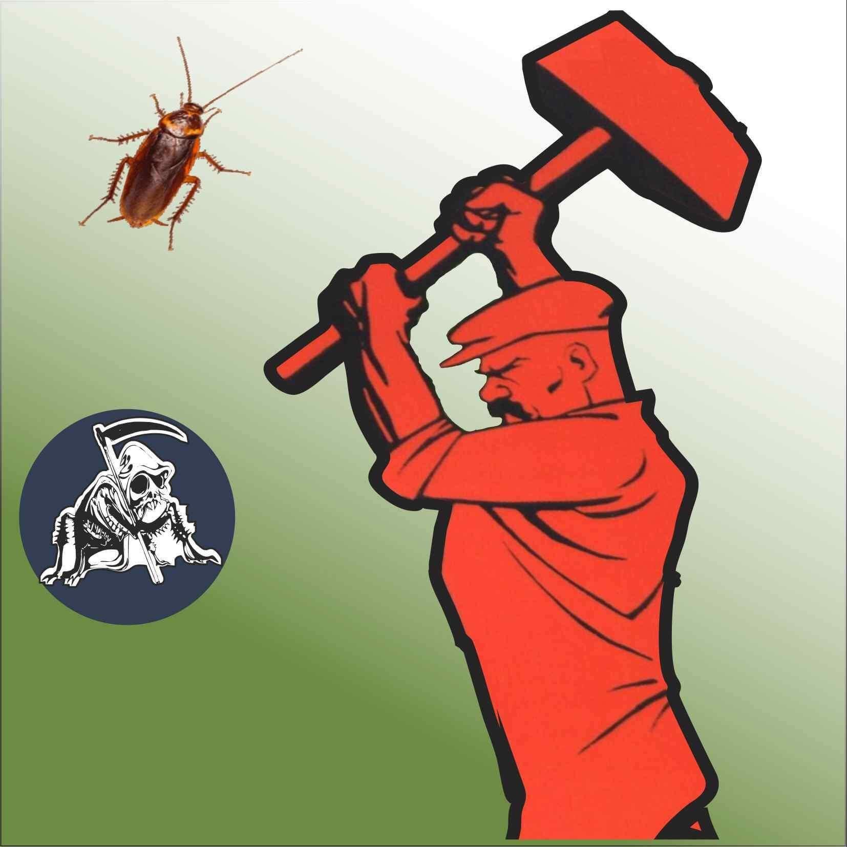 Самые эффективные из средств Дохлокс от тараканов: мгновенные яд, борная бомба