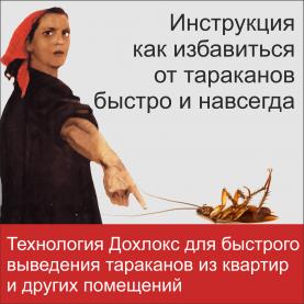 21 e1558958766535 - Два самых эффективных средства от тараканов в квартире