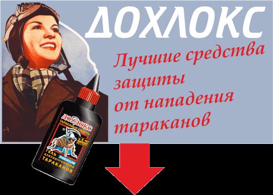Плакат Дохлокс1 - Три совета как избавиться от тараканов раз и навсегда