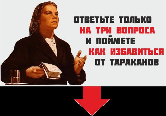 Плакат вопросы 6 - Три совета как избавиться от тараканов раз и навсегда